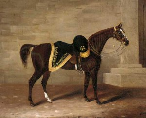 Copenhagen, horse of the Duke of Wellington.